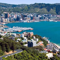 Flights to Wellington