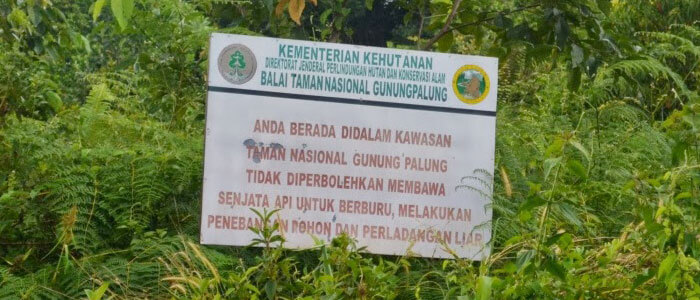 National Park Gunung Palung