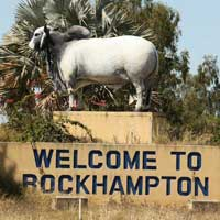 Flights to Rockhampton